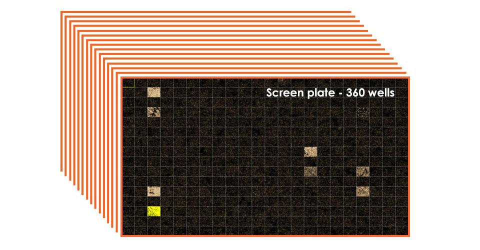 1. PSM Screen: Target-specific tRNA pair